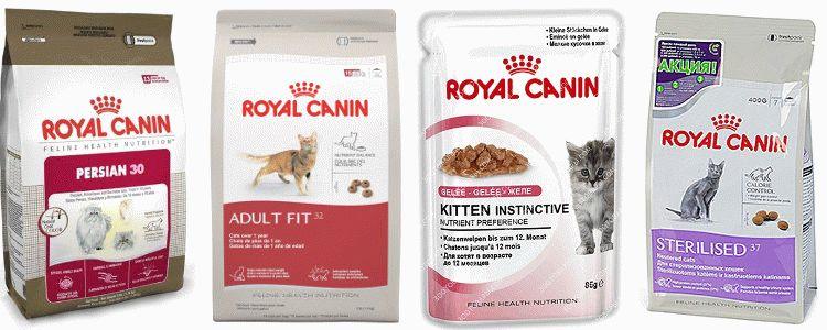 Отзывы о корме Роял Канин для кошек