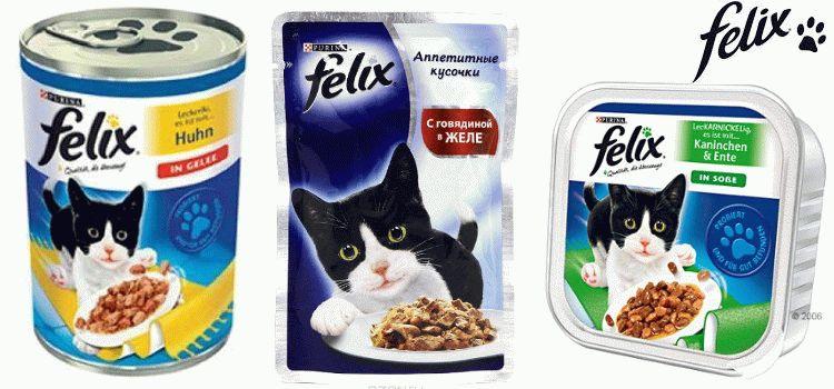 Сухой корм для котов феликс