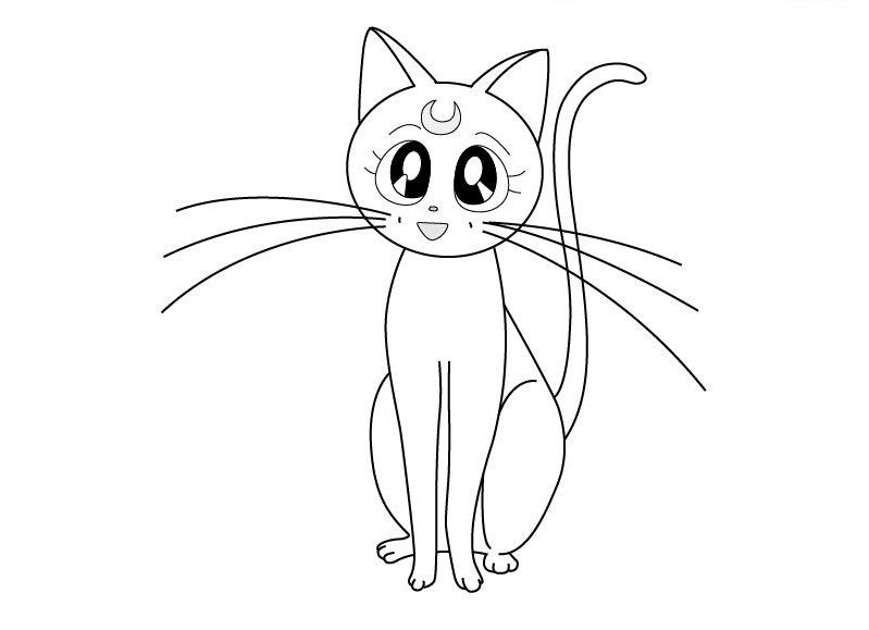 Нарисованные картинки девочки и кота
