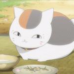 Кравивые картинки аниме кошек
