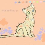 Красивые кошки аниме картинки