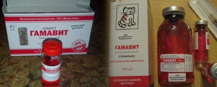 Гамавит для кошек инструкция по применению и дозировка