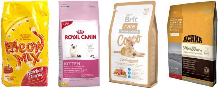 Каким кормом кормить кошку - советы ветеринаров