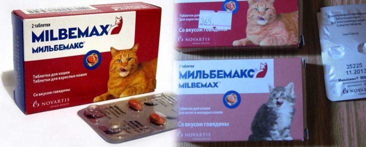Мильбемакс для кошек инструкция, цена, отзывы