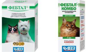 Фебтал для кошек - инструкция по применению