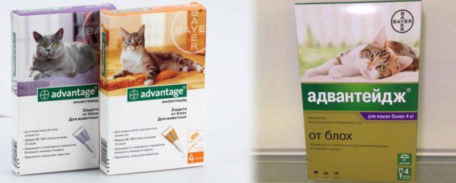 Адвантейдж для кошек инструкция