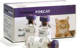 Нобивак для кошек - инструкция