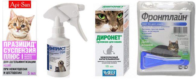 Седства от паразитов для кошек