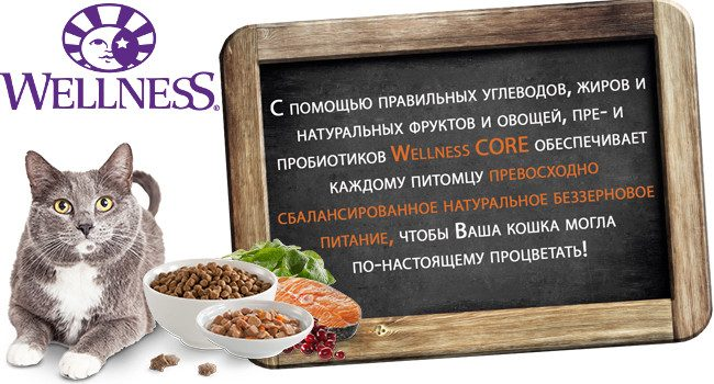 Сухой корм для кошек Wellness CORE