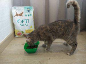 Корм для кошек Оптимил