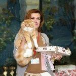 Розплідник Шотландських висловухих котів «Dal Riata»