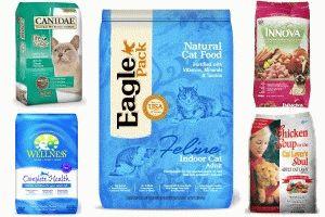 Рейтинг котячих кормів холістік класу