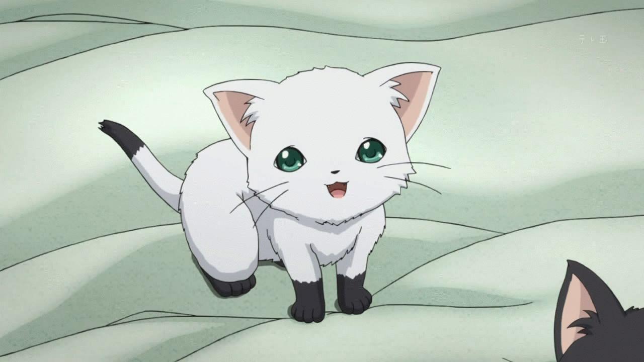 Картинки аніме кішка 02
