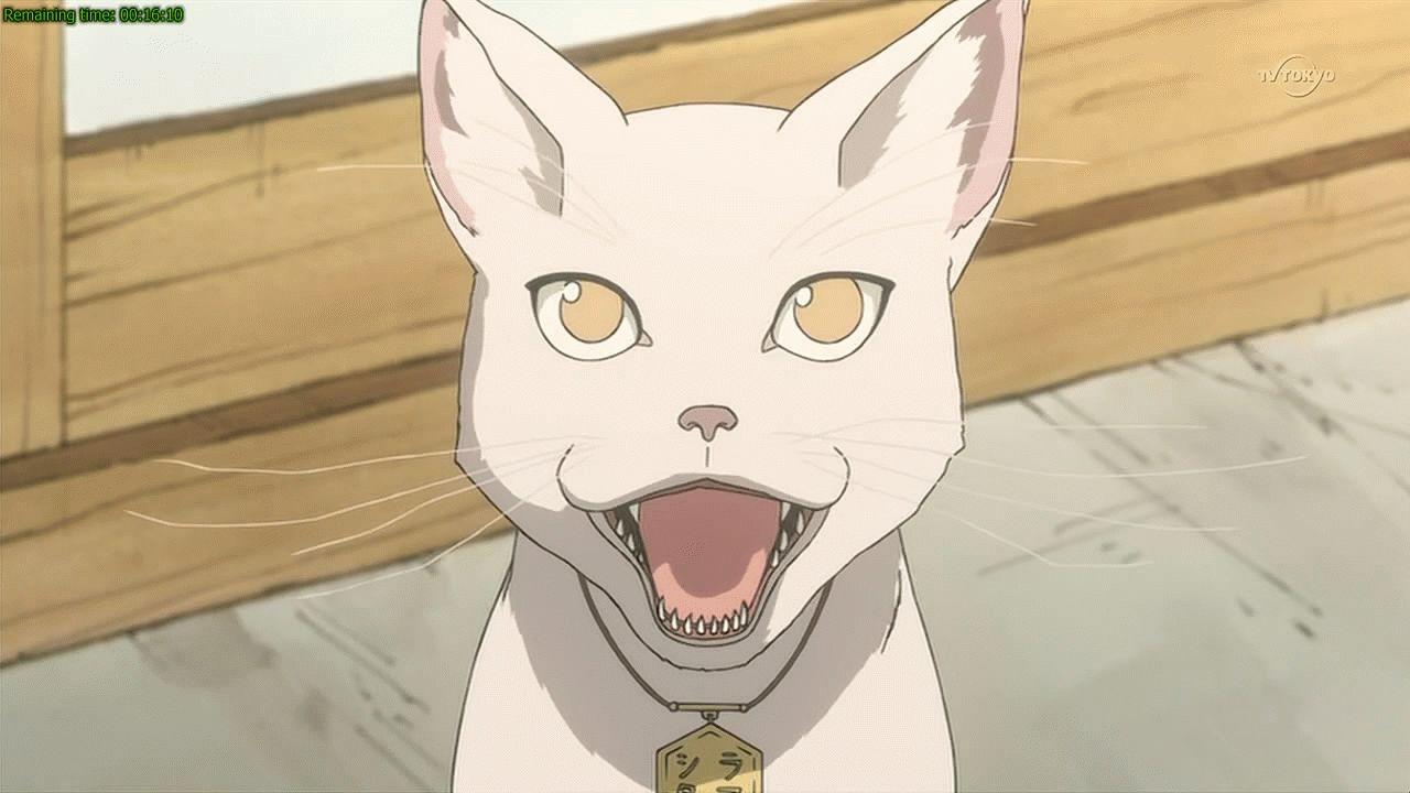Картинки аніме кішка 04