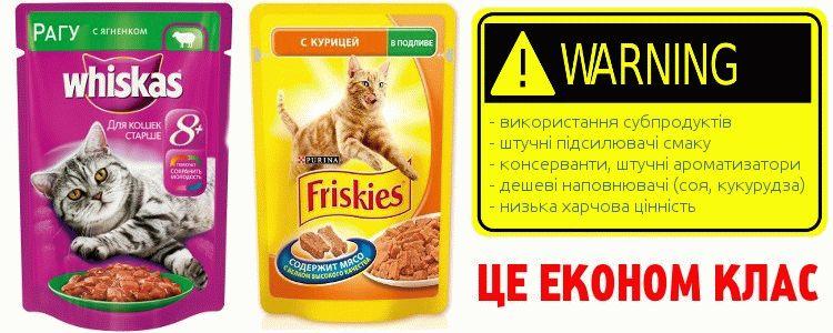 Не можна годувати кота дешевим сухим кормом