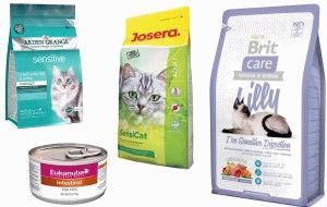 Хороші корма для котів з чутливим травленням